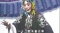 崔兰田豫剧经典唱腔欣赏�D专辑:《河南梆子》
