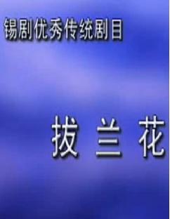 锡剧《拔兰花》【小王彬彬、袁梦娅】