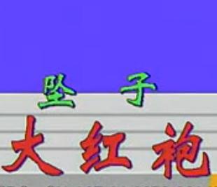 河南坠子大红袍全集(视频+MP3下载)