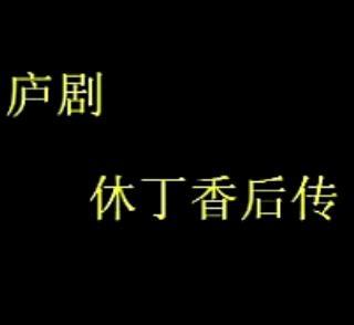 庐剧《休丁香后传》